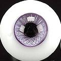 KN_PW 16MM.紫蘭